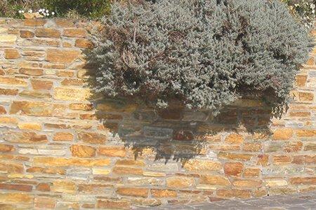 Muro piedra rústica